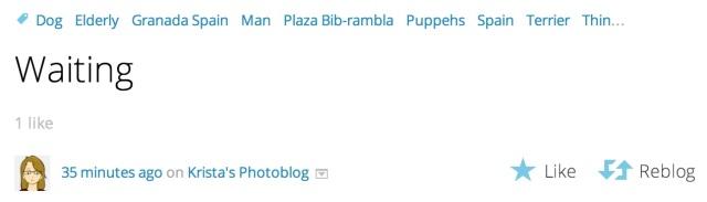likereblog
